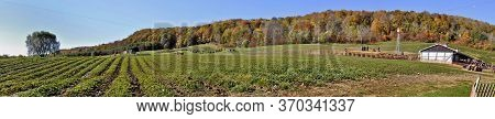 Milton, Ontario / Canada - 10/19/2008: Panoramic View Of A Farm Field At Niagara Escarpment In Autum
