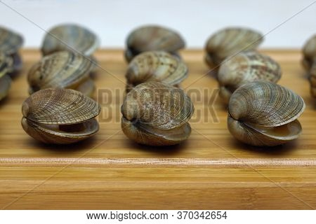 Fresh Raw Vongole Clams Are Laid Out In A Row On A Wooden Board. Sea Delicacy.