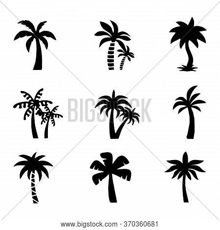 Set Of Palm Trees. Collection Of Silhouette Of Palm Tree. The Contours Of Tropical Plants. Black Whi