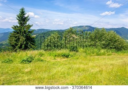 Mountain Scenery In Summer. Blue Sky With Clouds. Green Grass On The Meadows. Calm Nature Scenery Of