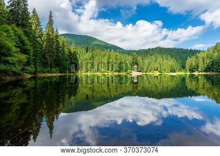 Reflection In The Water. Lake Among The Forest. Beautiful Nature Landscape In Summer. Sunny Weather
