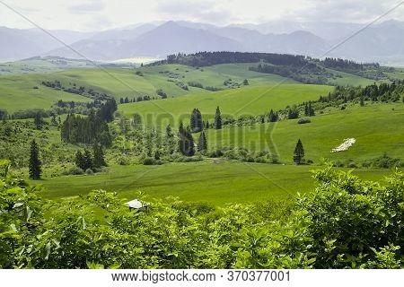 Beautiful Surrounding Nature Near The Pastierska Mountain Hut In The Bobrovecka Valley In Liptov.
