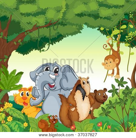 illustration of various animals in the forest