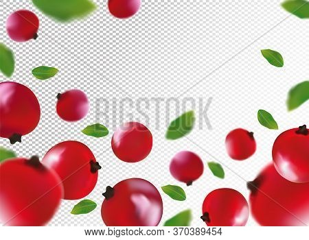 3d Realistic Red Currant Berry With Green Leaf. Freshly Red Currant Berry In Motion. Red Currant Bac