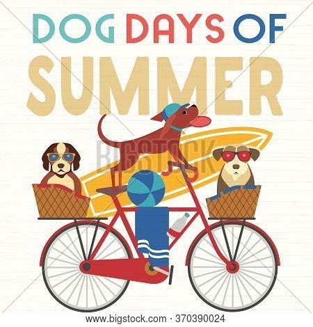 Dog Days Summer Time. Cute Comic Cartoon. Colorful Humor Retro Illustration. Cute Pet Dogs Riding Bi