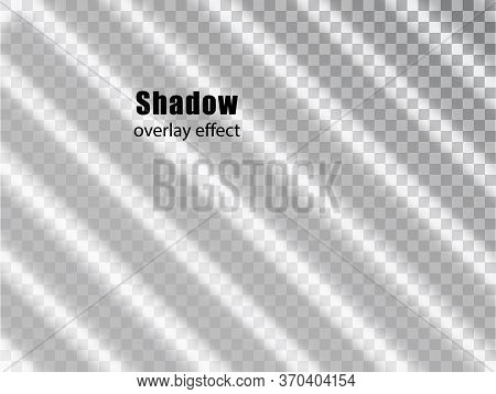 Shadow Overlay Transparent Effect. Light And Shadow Realistic Grey Decorative Background. Shadow And
