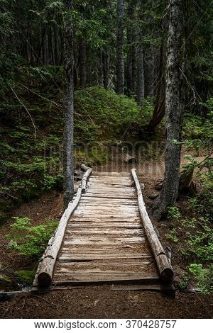 Rickety Wooden Bridge Over Ravine In Forest In Pacific Northwest Forest