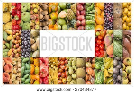 Creative Collage Of Tropical Fruit Images - Text Space