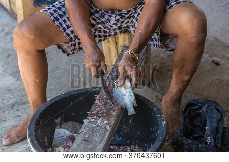 Local Old Man Hand Cutting Fish In Their Own Way