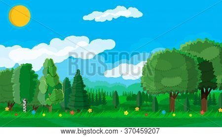 Summer Landscape Concept. Green Forest And Blue Sky. Countryside Rolling Hills. Hills, Flowers Trees