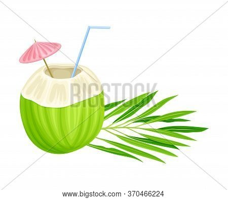 Subtropical Coconut Cocktail In Green Coconut Shell With Straw And Umbrella Vector Illustration