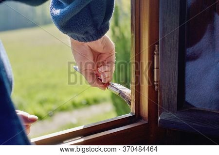Man Decorator Painting Wooden Window, Hand Detail
