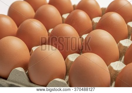 Close-up Of Chicken Eggs In A Pack. Front View