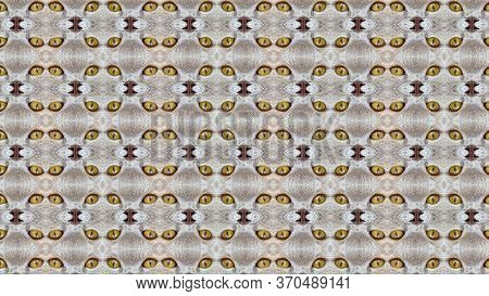 Background With Yellow Cats Eyes: Close Up Of A Tabby Cats Eyes