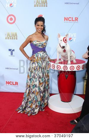 LOS ANGELES - SEP 16:  Victoria Rowell arrives at the 2012 ALMA Awards at Pasadena Civic Auditorium on September 16, 2012 in Pasadena, CA