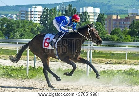 Pyatigorsk,russia - June 7,2020:jockey Ivanskoy Alexander On Brown Stallion Optimist Will Finish The