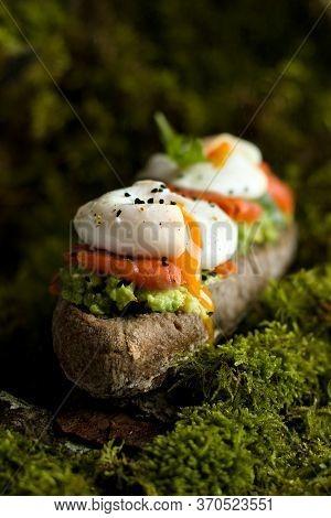 Breakfast In The Woods On Moss, Tasty Poched Eggs Salmon Avocado Sandwich In The Forrest. Warm Green