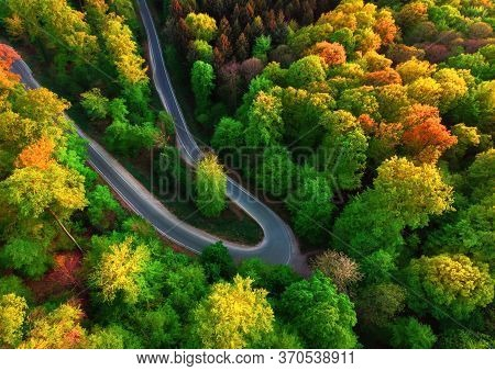 Colorful Aerial Landscape Downward Shot With The View Of A Road Bend In A Beautiful Forest With Deci