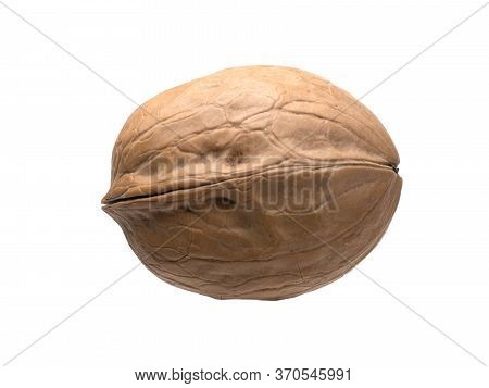 Graphic Resources Isolated Object Closed Ripe Walnut. Tasty Diet Healthy Wholesome Food. Volosh Nut,