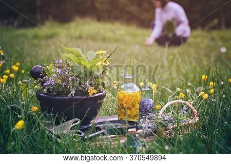 Mortar Of Medicinal Herbs, Old Book, Infusion Bottle, Scissors, Basket And Magnifying Glass On A Gra