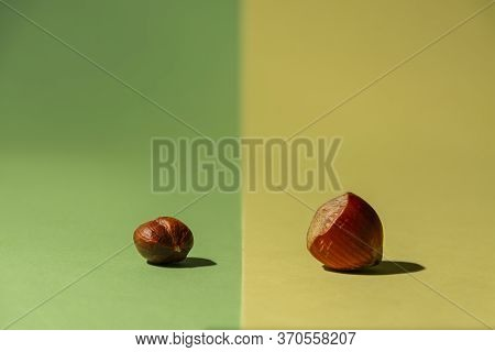 One Raw Hazelnut From The Tree Along With Another One Without Shell On Green And Yellow Background