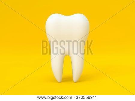 Dental Model Of Premolar Tooth On Yellow Background. Concept Of Dental Examination Teeth, Dental Hea