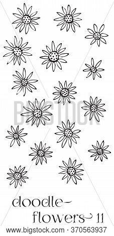 Doodle flowers 11 hand drawn vector image set, simple line drawing illustration variations