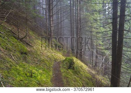 Hillside Trail In The Fog. Austrian Alps, Tyrol, Surroundings Of The Mayrhofen Ski Resort.