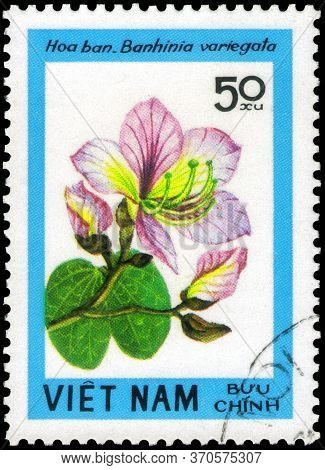 Saint Petersburg, Russia - May 31, 2020: Postage Stamp Issued In The Vietnam With The Image Of The O