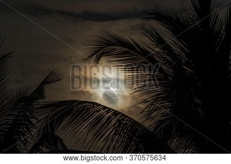 Solar Eclipse December 2019. Annular solar eclipse seen from Goa state, India. Solar eclipse with palm tree silhouette