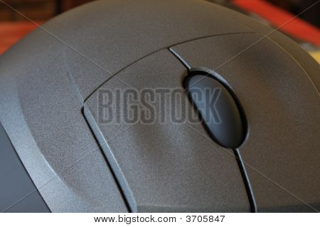 Two Button Wheel Mouse