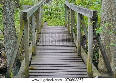 A Nice Bridge Deep In The Forrest