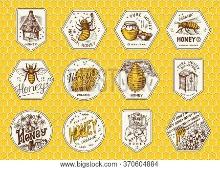 Honey And Bees Stickers Set. Beekeeper Man And Honeycombs And Hive And Apiary. Vintage Logo For Typo