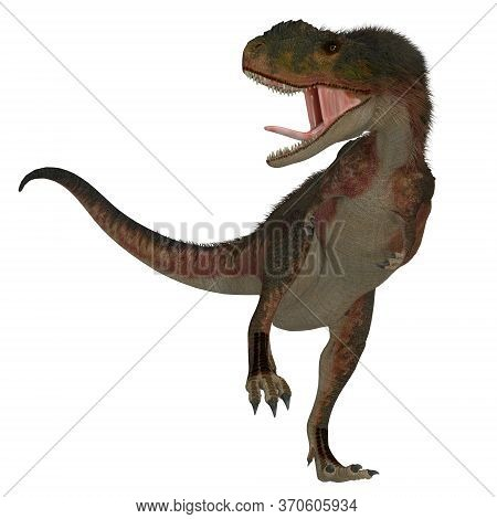 Rugops Dinosaur On White 3d Illustration - Rugops Was A Predatory Feathered Theropod Dinosaur That L