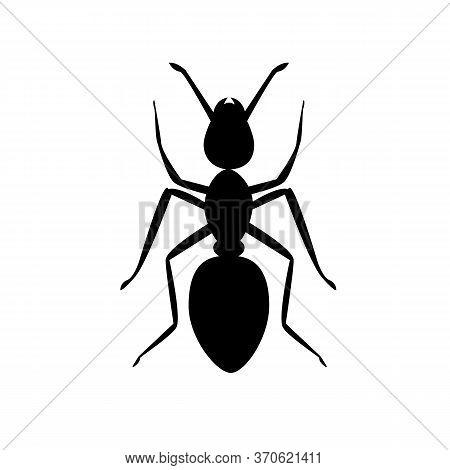 Ant Icon On White Background. Ant Animal Sign. Black Ant Symbol.