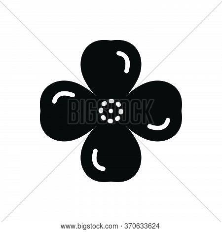 Black Solid Icon For Quatrefoil  Design Symbole  Four-leaf Clover