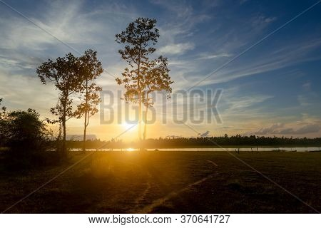 Tree Silhouette Sunset And Beautiful Cloudy Landscape