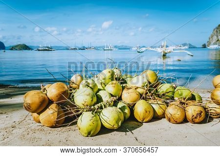 Branch Of Fresh Coconut Fruits On The Corong Beach In El Nido, Palawan, Philippines