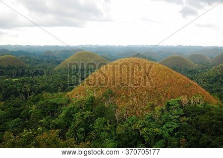 Chocolate Hills Landscape View With Surrounding Trees In Carmen, Bohol, Philippines