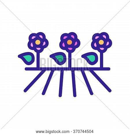 Flower Plantation Icon Vector. Flower Plantation Sign. Isolated Color Symbol Illustration