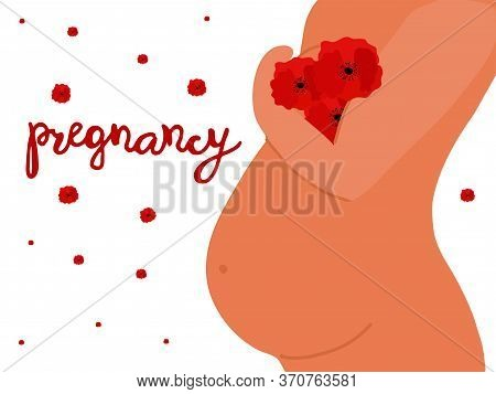 Naked Pregnant Woman With Chamomile With White Petals And Yellow Center Above Her Belly. Pregnancy A