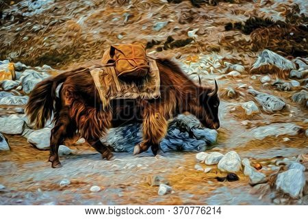 Bale-laden Woolly Yak Climbing Steep Rocky Trail In The Himalayas. The World Largest And Highest Mou