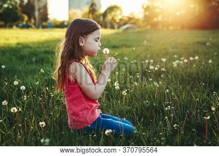 Cute Adorable Caucasian Girl Blowing Dandelions. Kid Sitting In Grass On Meadow. Outdoor Fun Summer