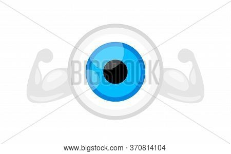 Eyeball Blue Isolated On White, Strong Healthy Eye Graphic Blue For Icon, Eyeball Illustration Clip