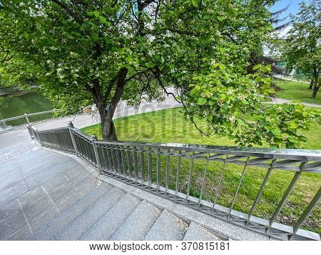 Top View Of A Stone Staircase With Blossoming Tree In City Park During Springtime