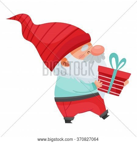 Fantastic Gnome Character With White Beard And Red Pointed Hat Holding Gift Box Vector Illustration