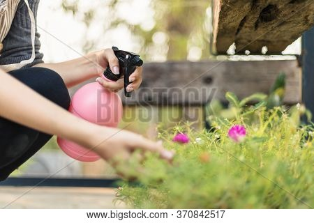 Beautiful Young Women Use Water Spray Bottle In The Garden.