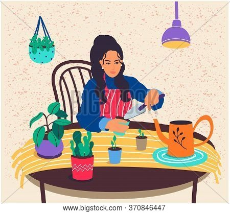 A Happy Girl Takes Care Of Potted Plants.a Young Woman Grows Indoor Plants At Home.the Female Charac