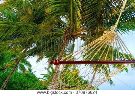 Maldives. Paradise On Earth.empty Hammock Between Palms Trees At Sandy Beach. View Of Nice Tropical