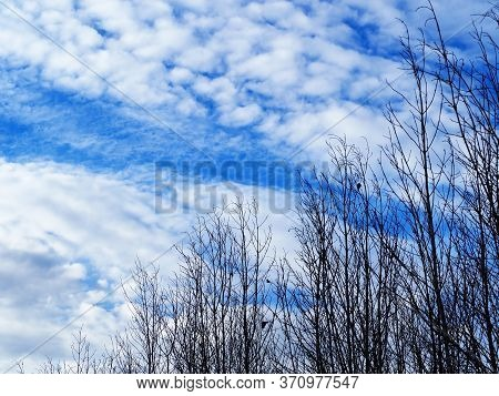 Beautiful Of Lanscape With Tree And Sky.blue Sky With Cloud.